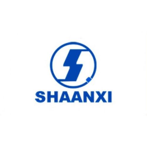 Shaanxi/Shacman Service manuals